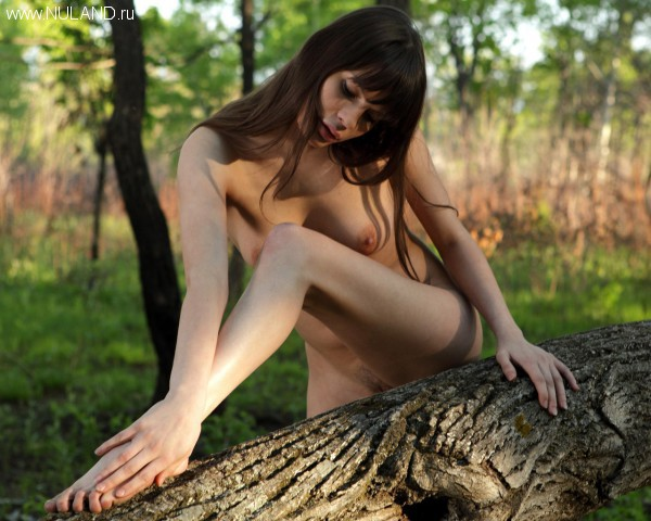 Ню фото из леса